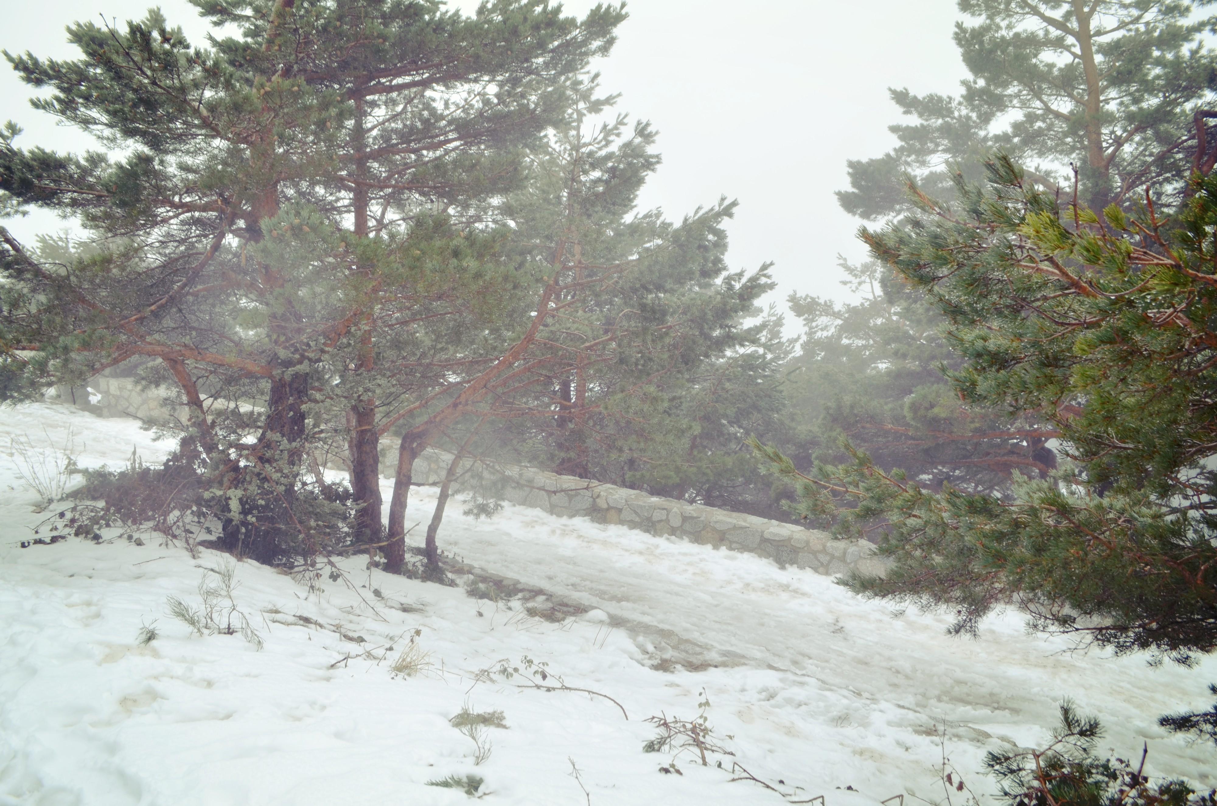 Blog-de-moda-Nieve-en-Madrid-estacion-de esqui-navacerrada-Chic-adicta-fashionista-Chic-Adicta-snow-travel-PiensaenChic-Piensa-en-Chic