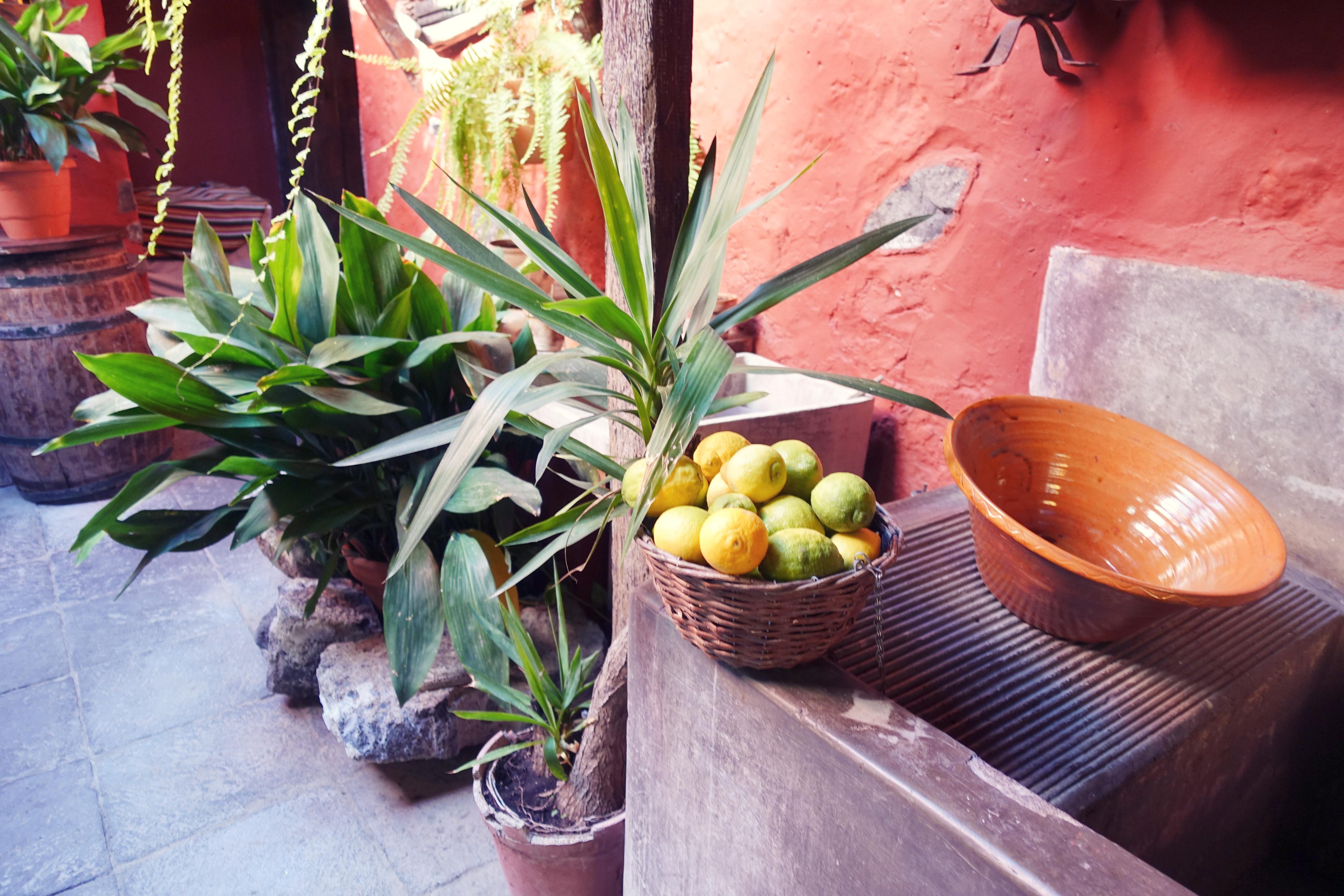 Que-ver-en Tenerife-blog-de-moda-fashion-travel-Piensaenchic-influencer-Chicadicta-patio-canario-La-orotava-Chic-adicta-Piensa-en-Chic